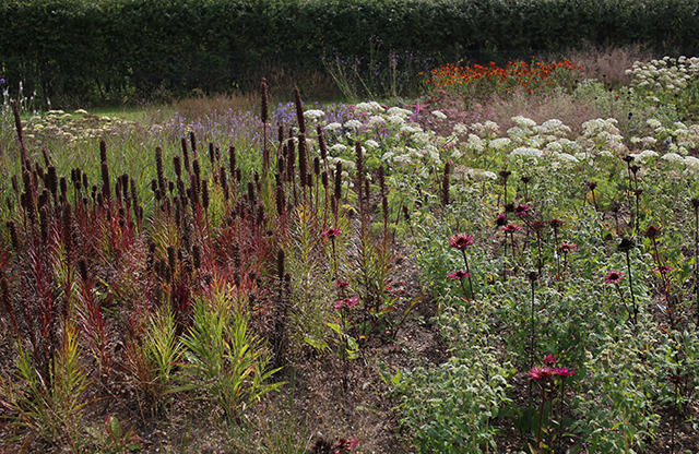 piet-oudolf-interview-hauser-wirth-somerset-garden-bruton-perennials