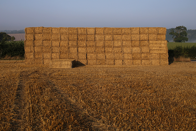 Somerset-architect-haystack-passivhaus-lollover-compton-dundon-somerton-wheat-