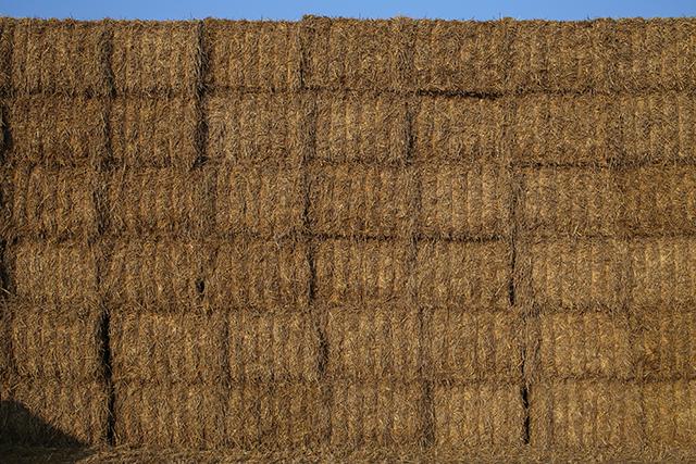 Somerset-architect-haystack-passivhaus-lollover-dundon-somerton-1