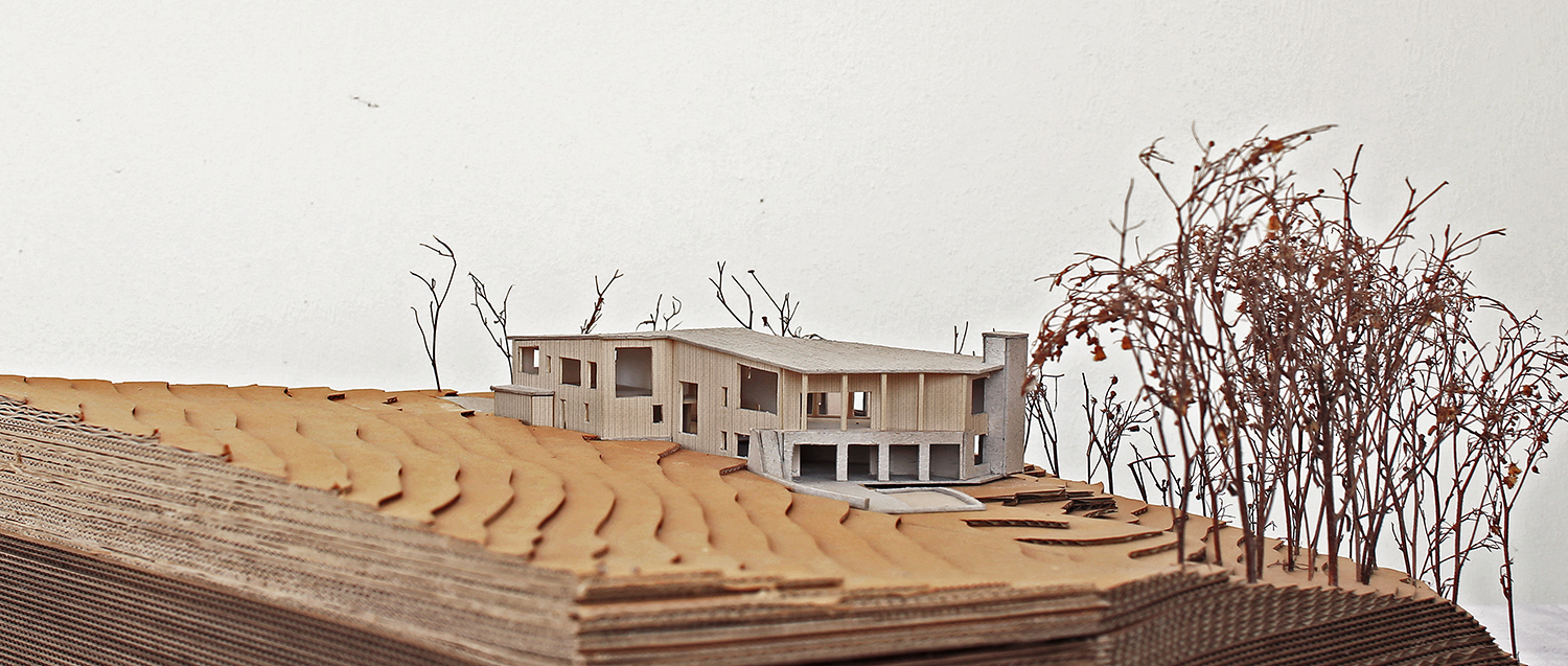 Swallowcliffe-passivhaus-wiltshire-prewett-bizley-architects-landscape-model-3.jpg