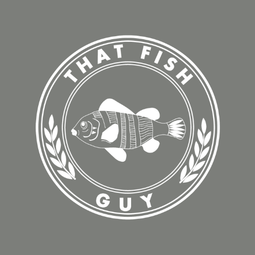EXCLUSIVE HIRE FISH & CHIP VANS