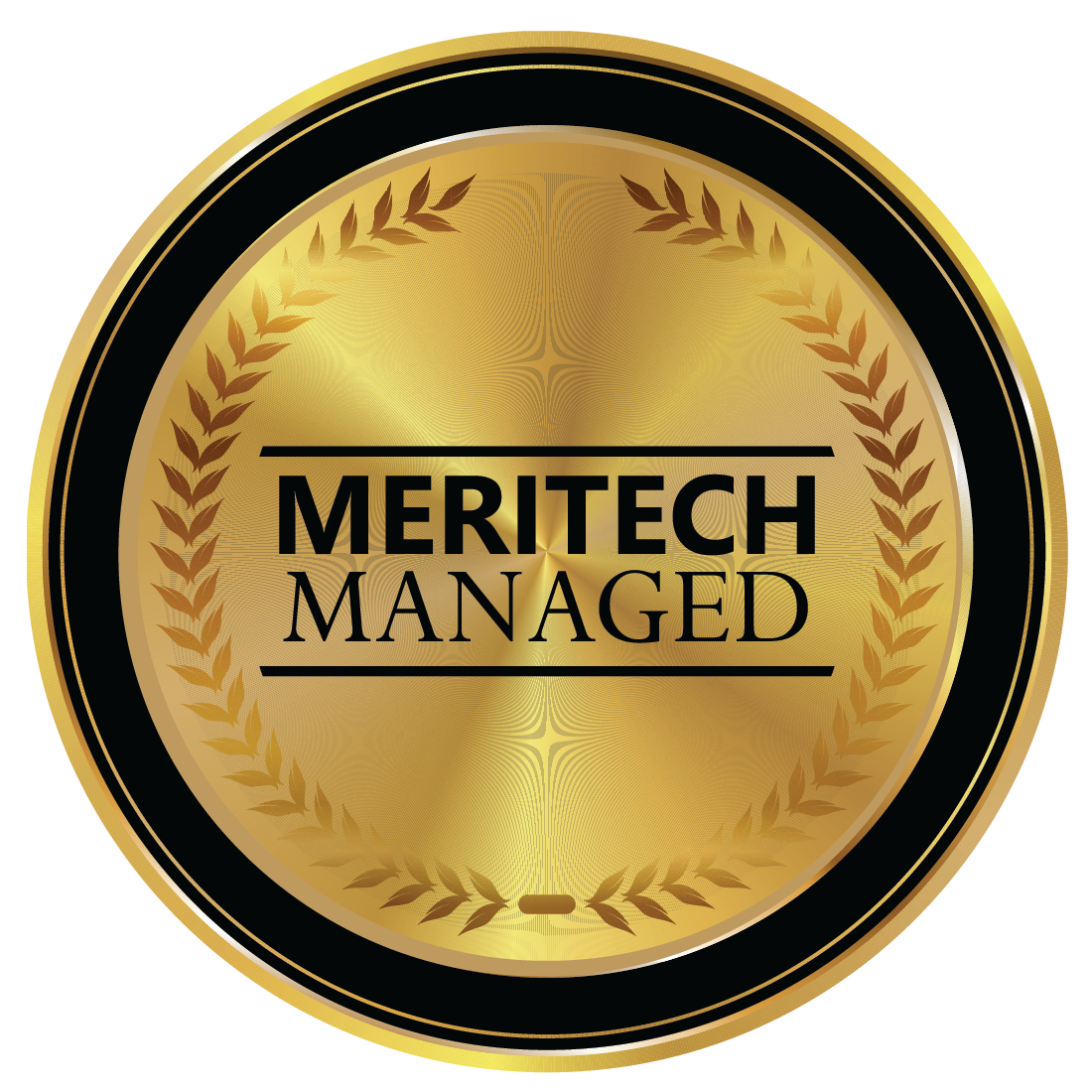 Meritech-Managed-Logo.png
