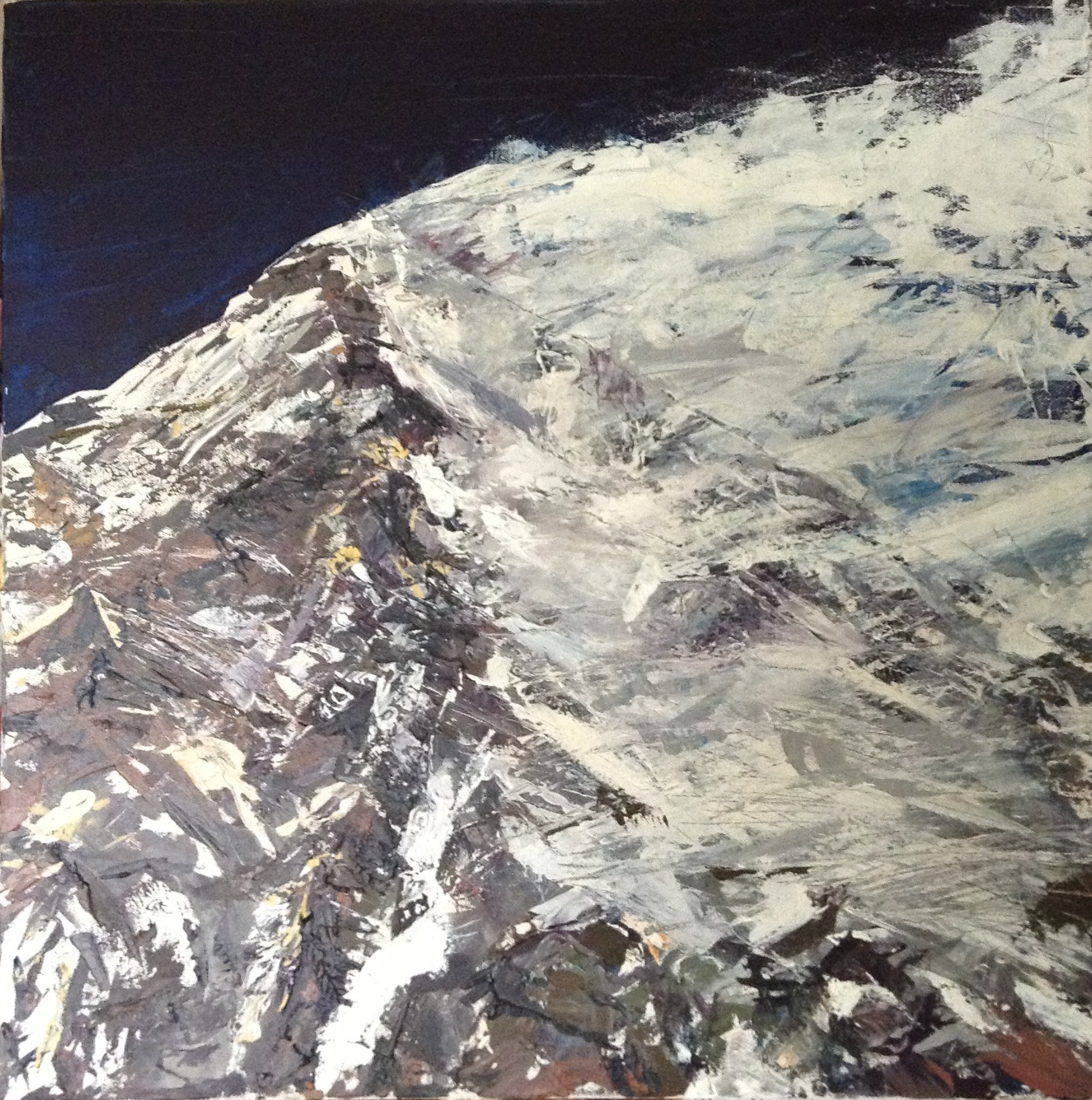 HUBRIS V: Acrylic on Canvas