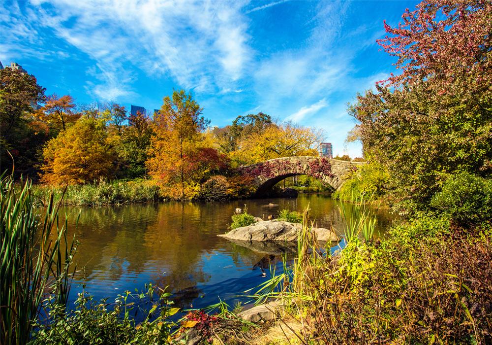 lindsay_michelle_barstow_bridge_nyc_central_park.jpg