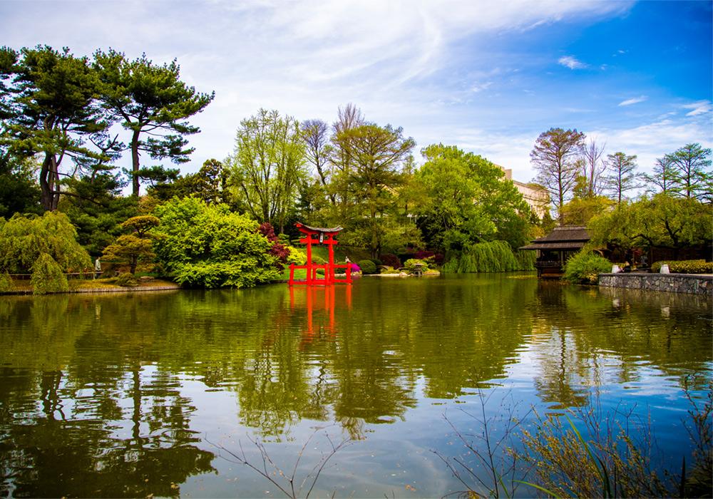 lindsay_michelle_brooklyn_botanical_garden.jpg