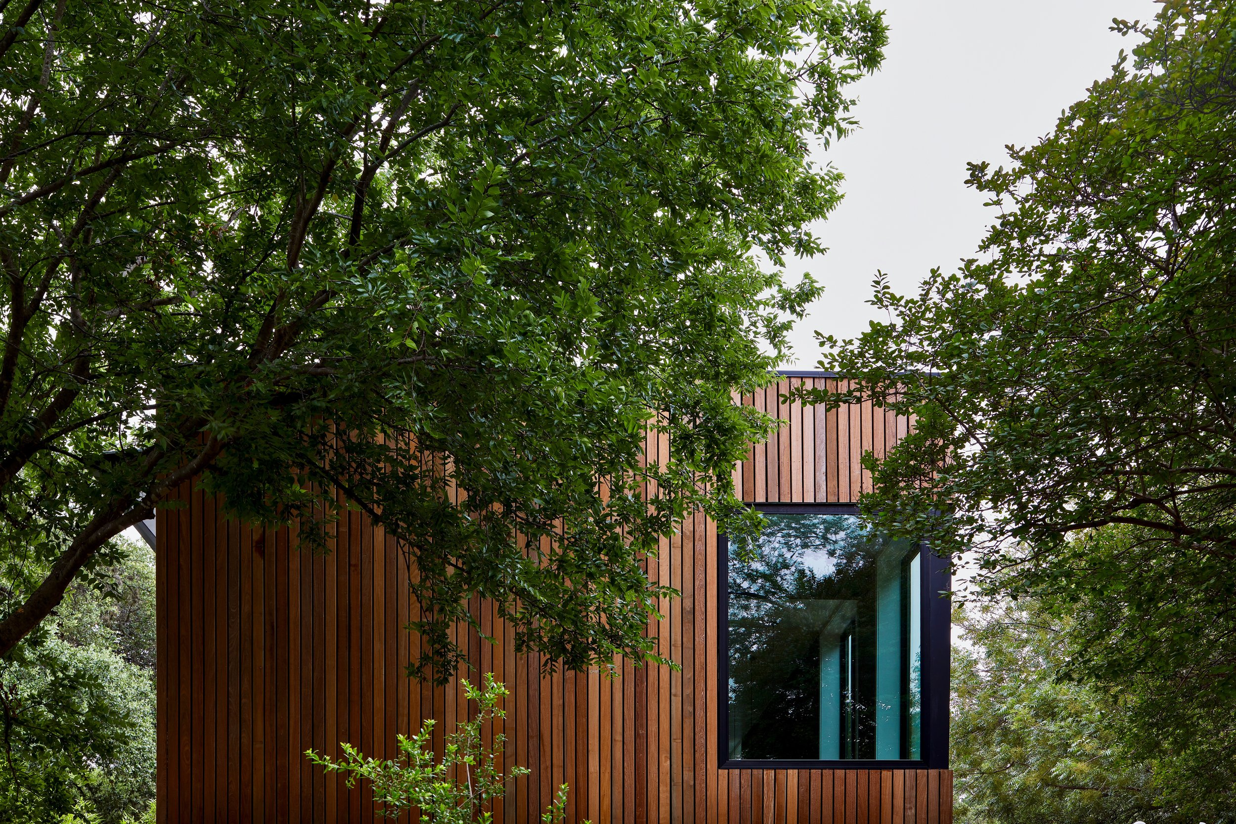 JESS_Furmansky_EXT_Rear Tree House.jpg