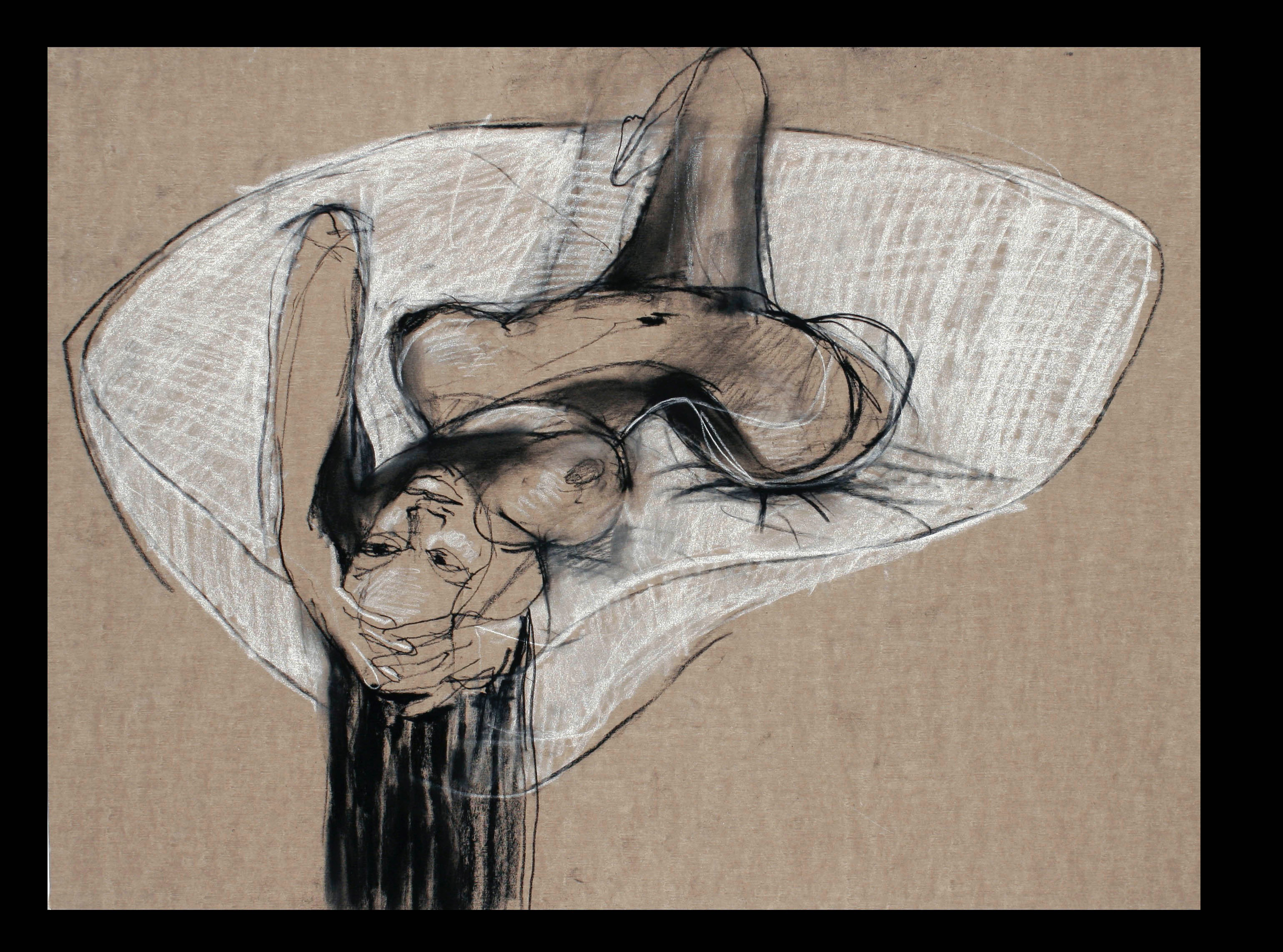 Charcoal on Belgian sandpaper  2005  22 x 30 Inches