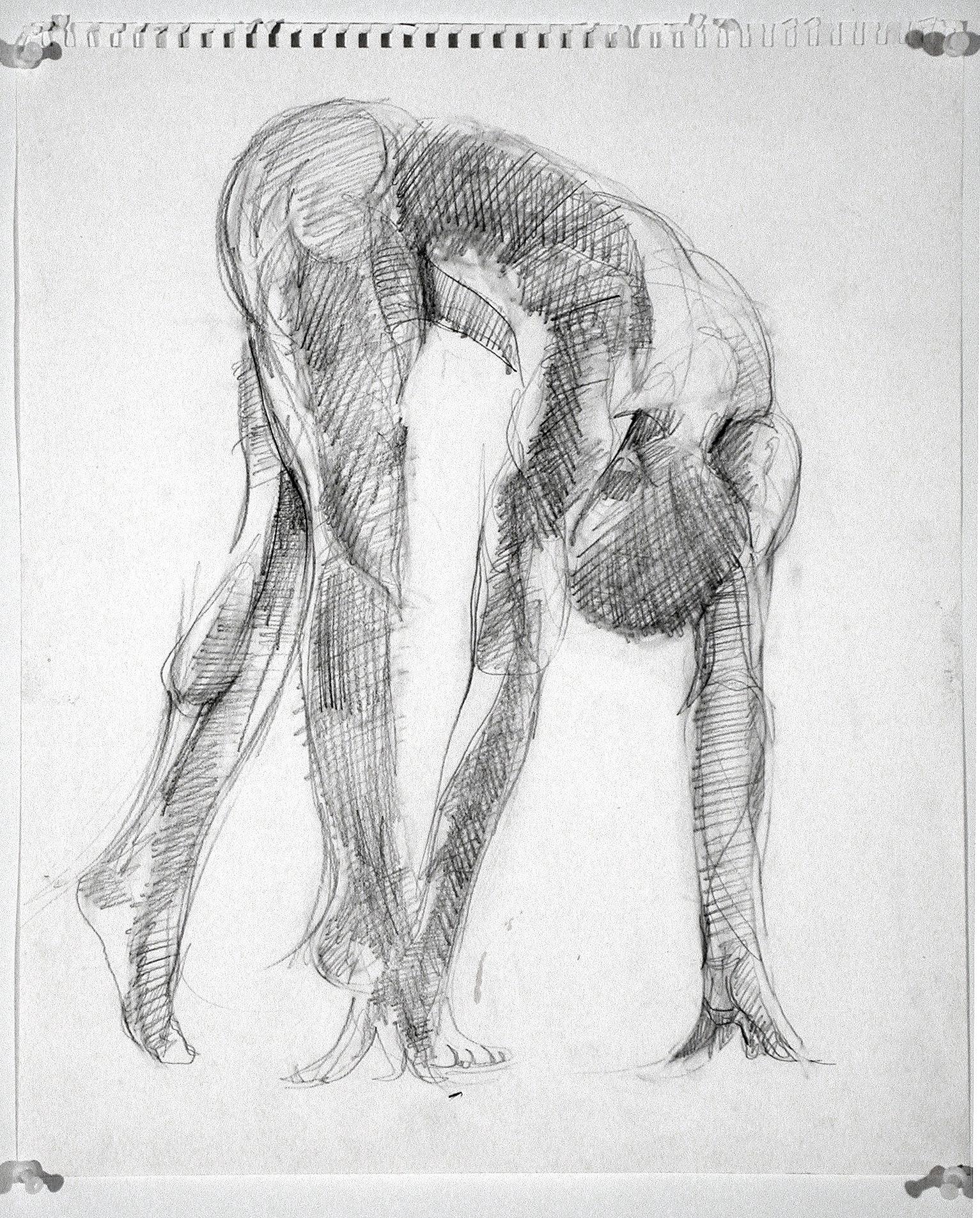 2005  18x12 in  Graphite on paper