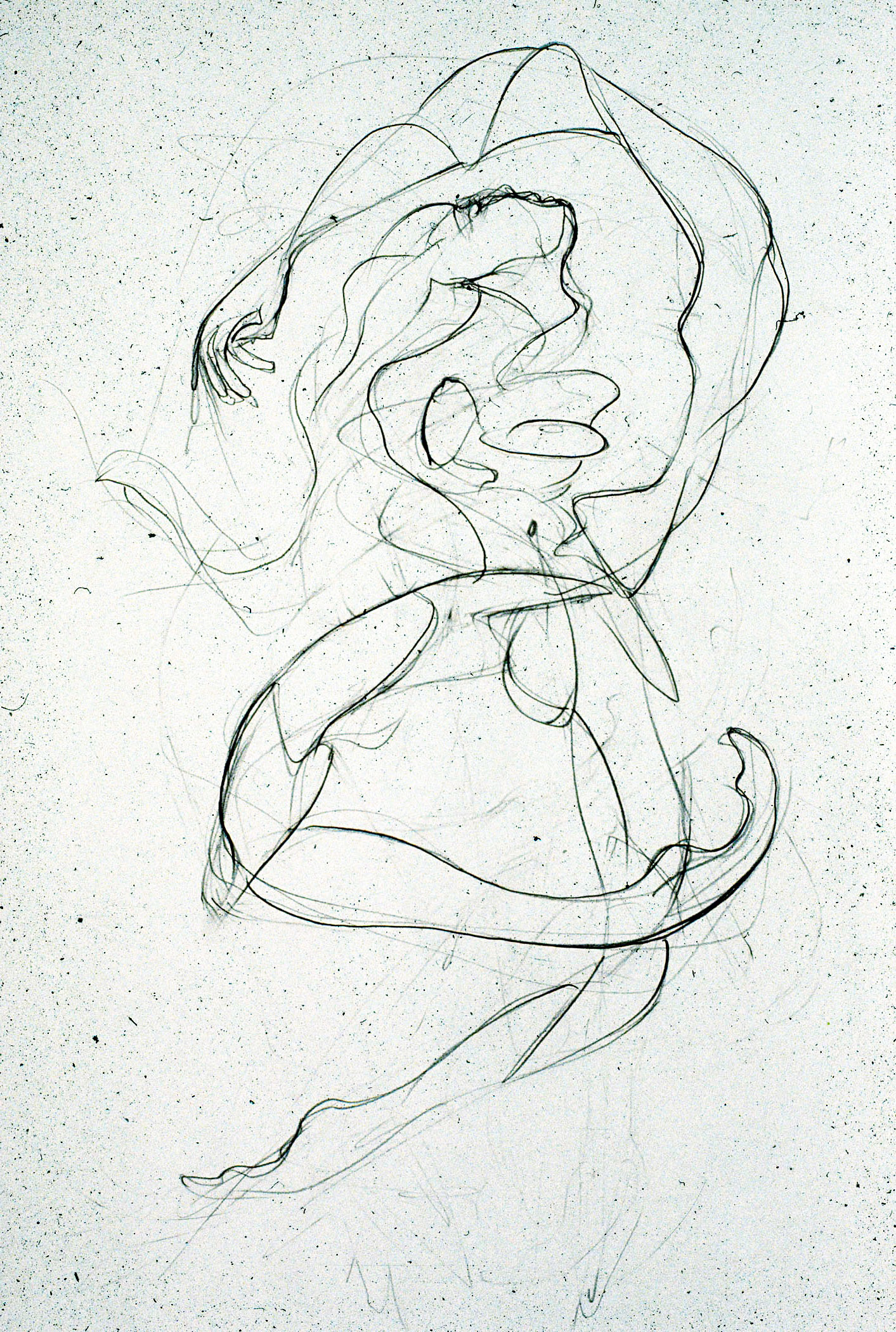 2010  Graphite on canvas  24x18 in.