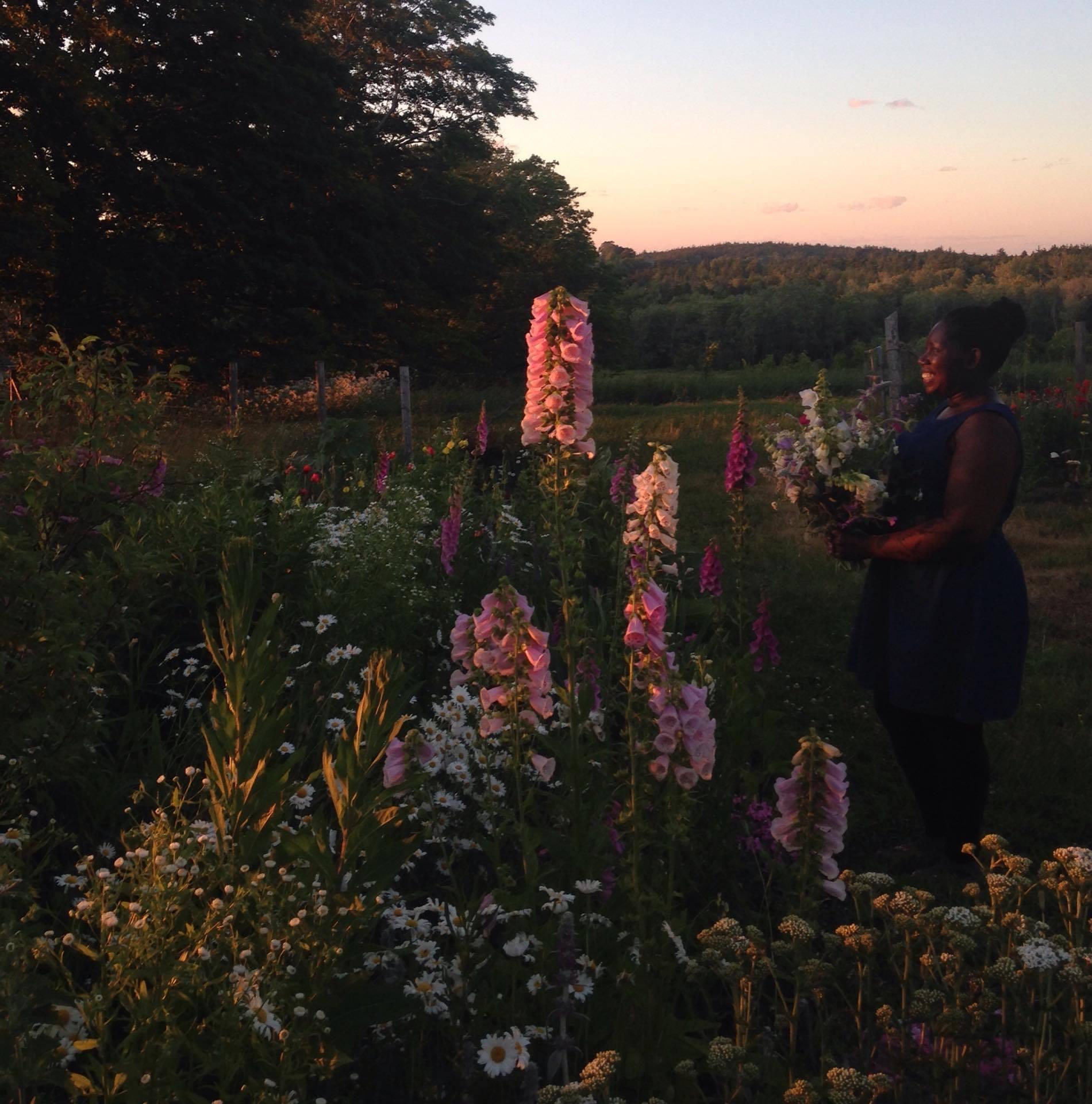 Halifax, Nova Scotia's bouquet subscription / flower CSA