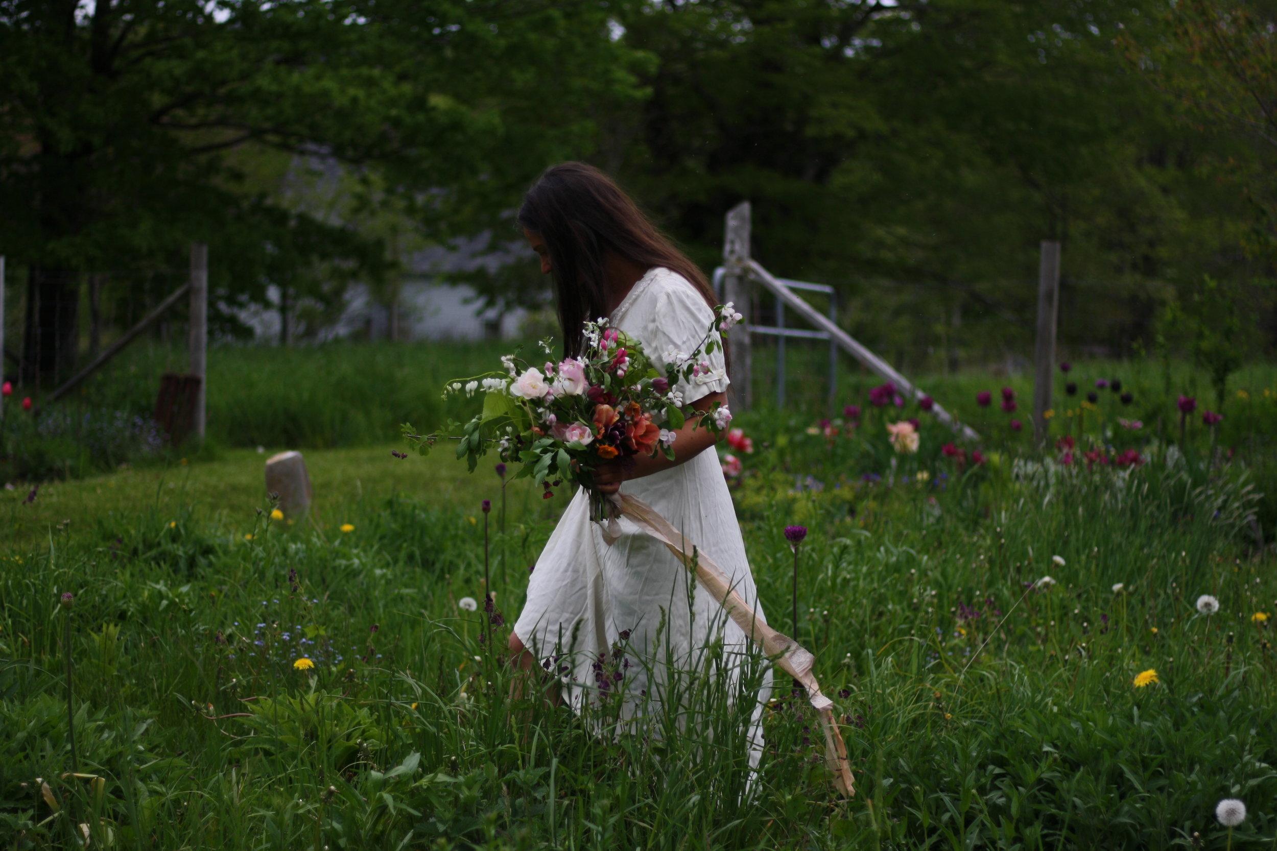 A hedgerow bridal bouquet, Nova Scotia. Spring in the garden.
