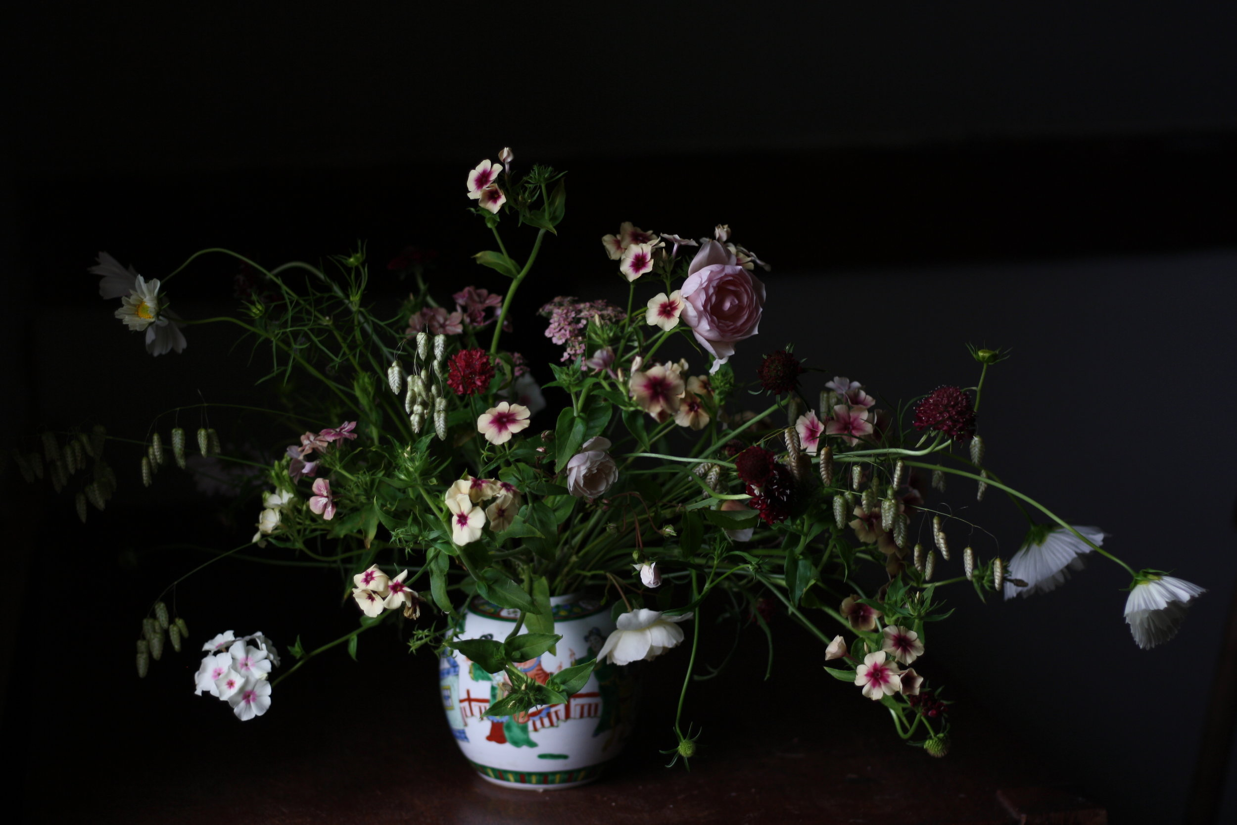 Table flowers, Hedgerow, Nova Scotia