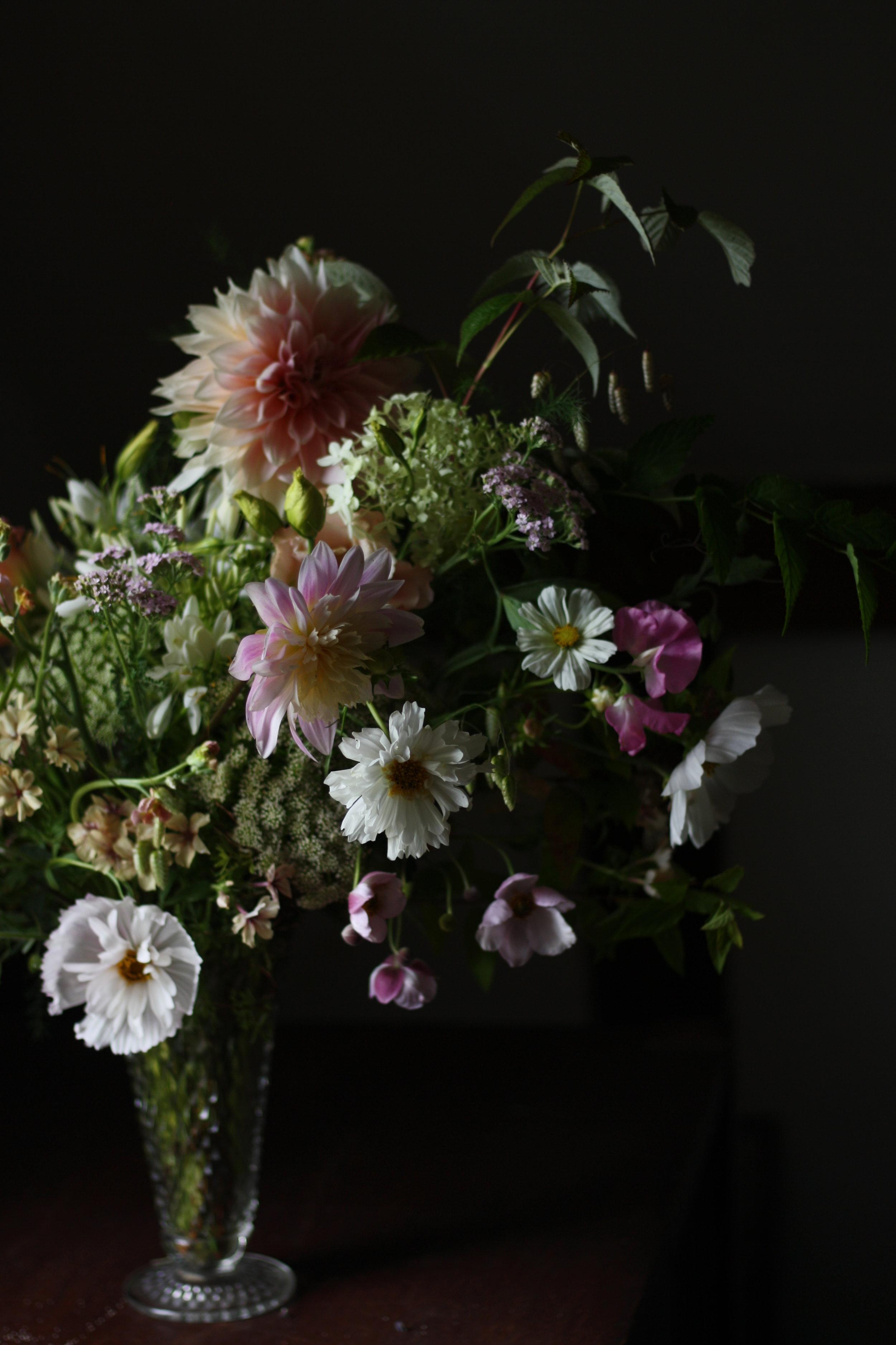 Locally grown, eco-friendly cut flowers. Nova Scotia