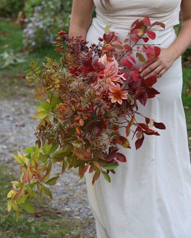 Day 3 of autumn bouquets . . Can you count how many flowers there are? I know it's hard. Soooo many... . . Flowers shmowers 💫🍁✨ . . #autumnbouquet #cascadingbouquet #fallweddinginspiration #gardengathered #canadiangrownflowers #totallytangerinedahlia #labyrinthdahlia #burningbush #farmerflorist #blueberryfoliage #organicflowers #eastcoastbride #weddinginspiration #halifaxflorist #forsythiafoliage #seedheads #rosehips #novascotiawedding #leafpeeping #rainbowflowers #halifaxweddings #halifaxns #annapolisvalley #novascotia #hedgerowflowercompany  #aseasonalshift #seasonspoetry #inspiredbynature #seasonalfloweralliance #hedgerows