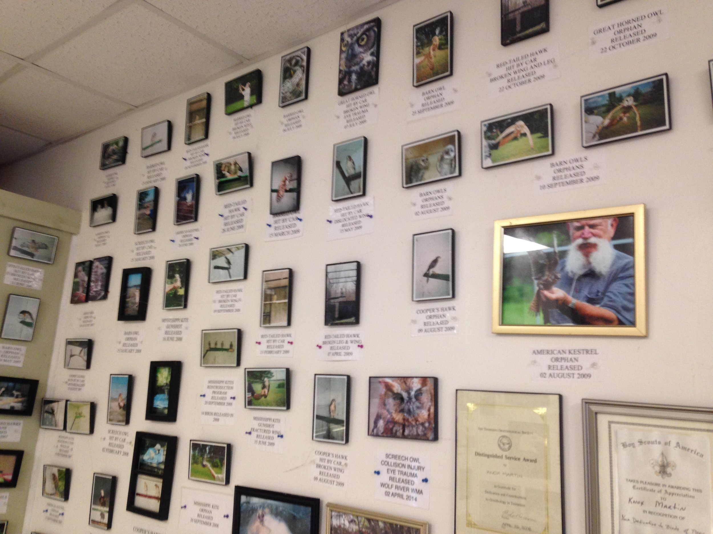 Wall of Fame showing some favorites over the years