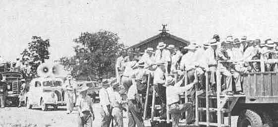 Field Day ( Shelby County Penal Farm , c1946).