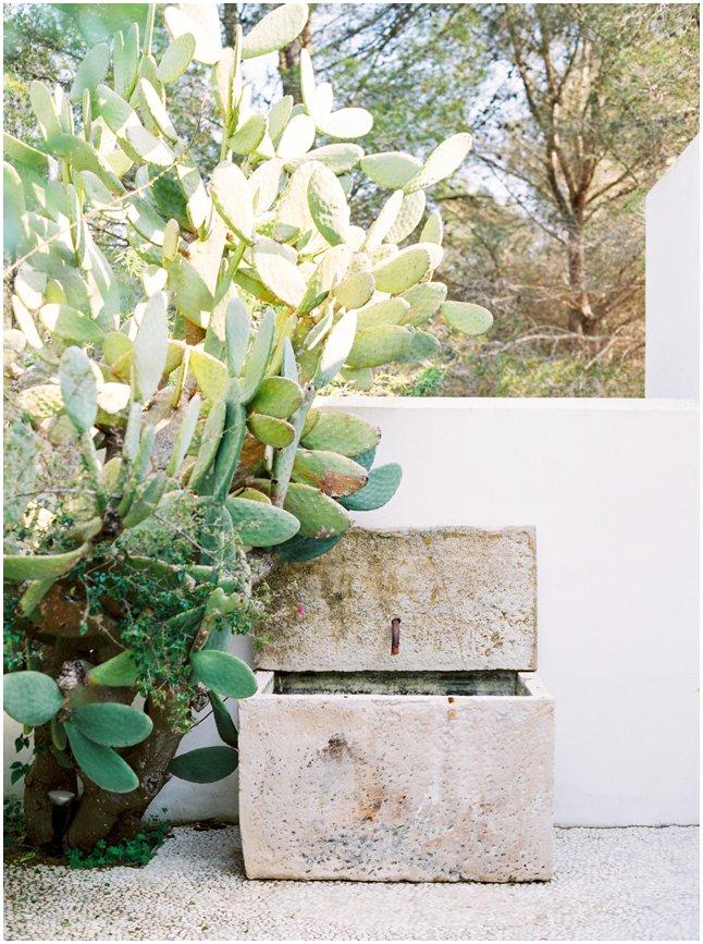 Ibiza home stylish villas