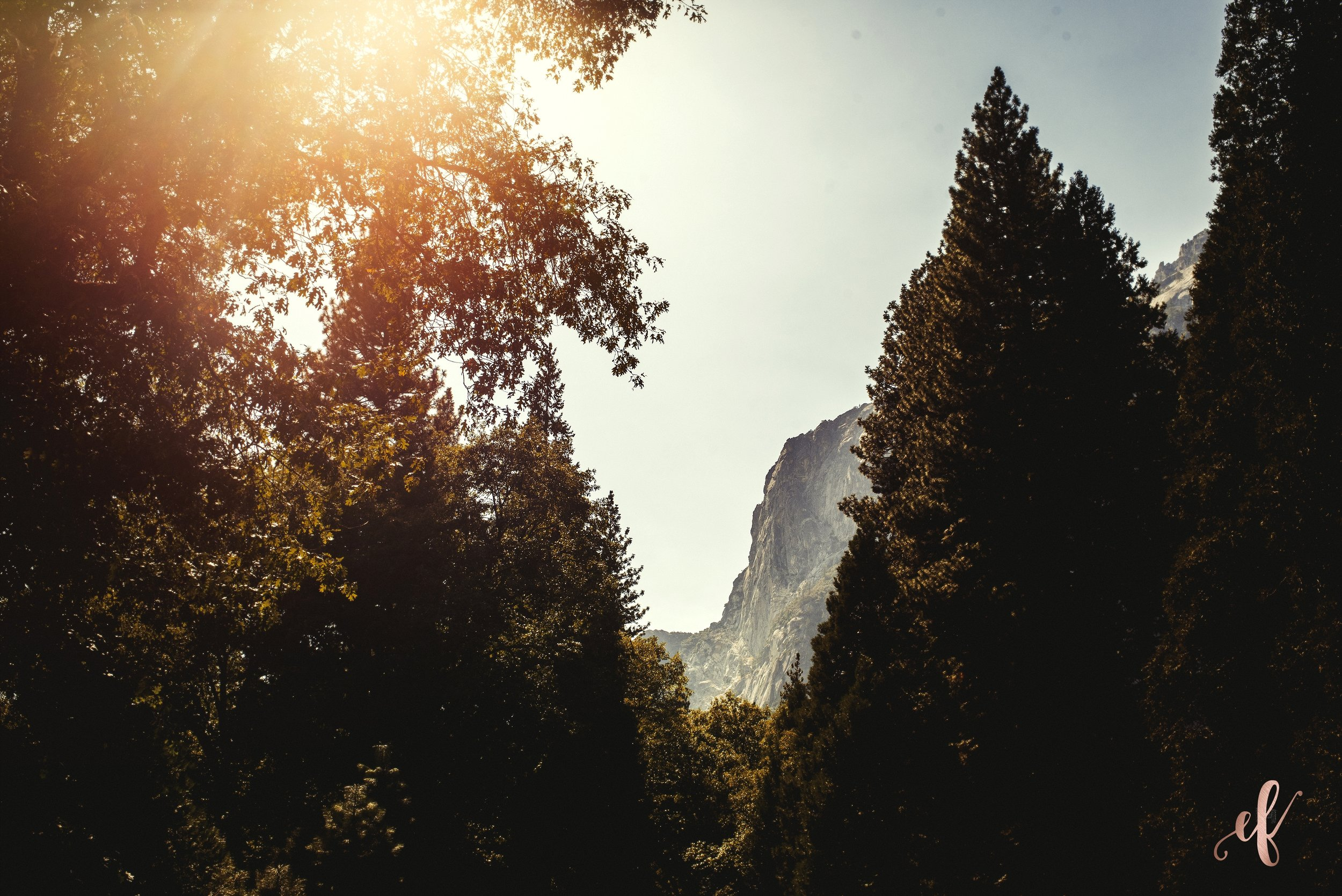 San Diego Portrait Photography | Yosemite National Park