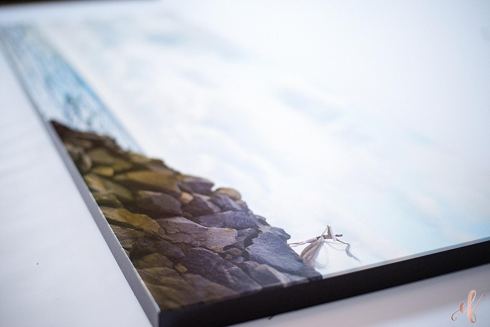 san diego portrait photography | Giant Canvas Print