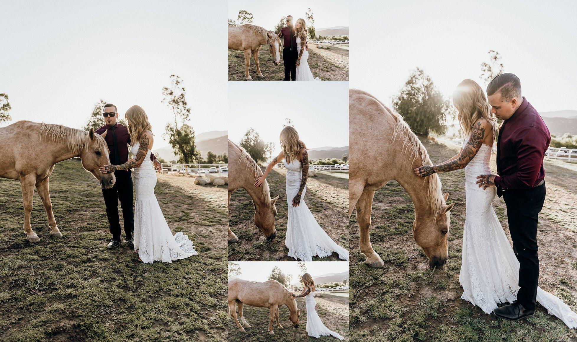 San Diego Wedding Photography La Bonita Ranch_0118.jpg