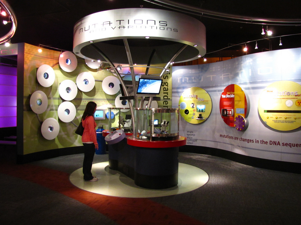 museum directional speaker install.jpg