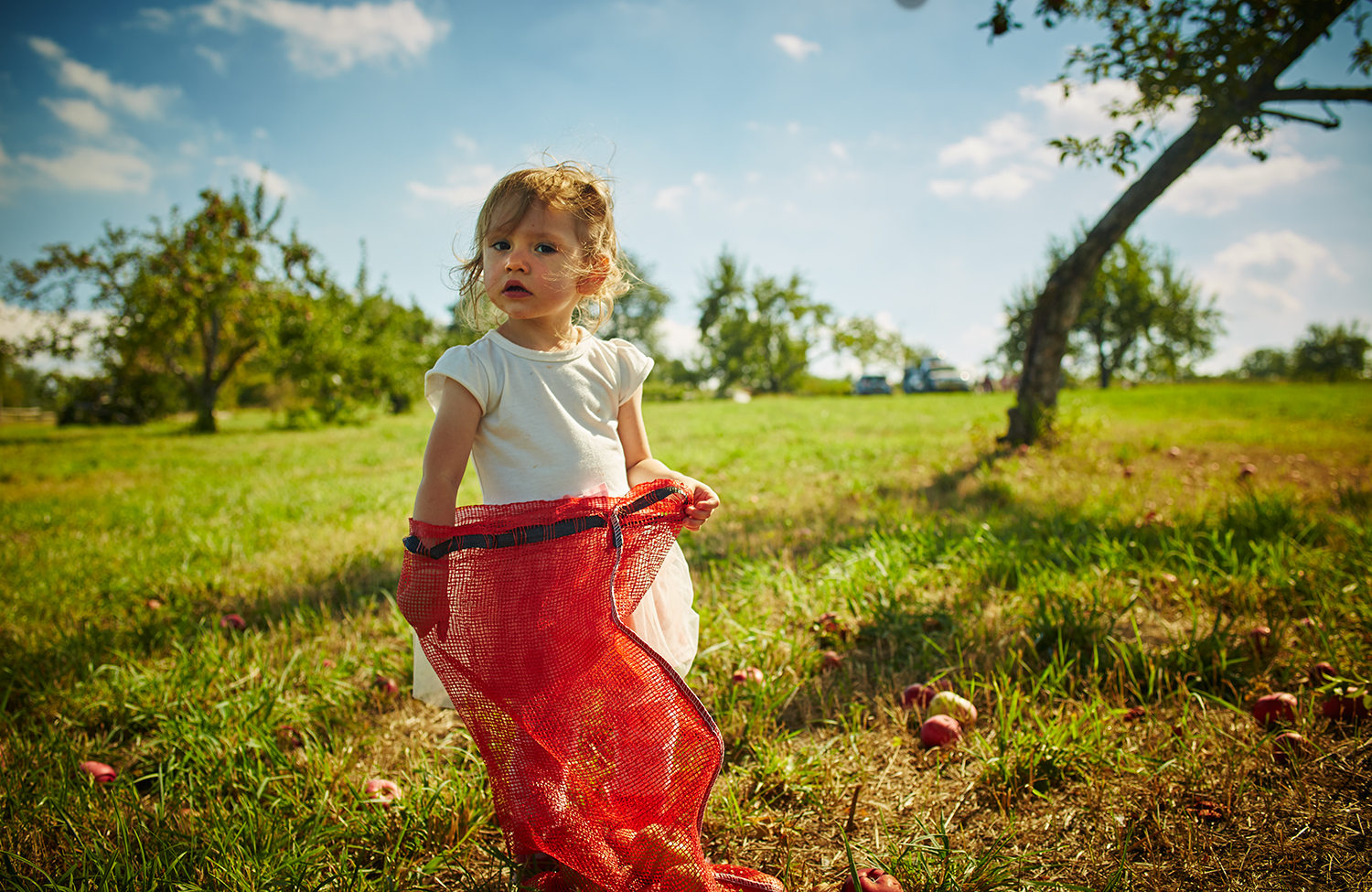 091915_Apple_Picking_OuthouseOrchards_231.jpg