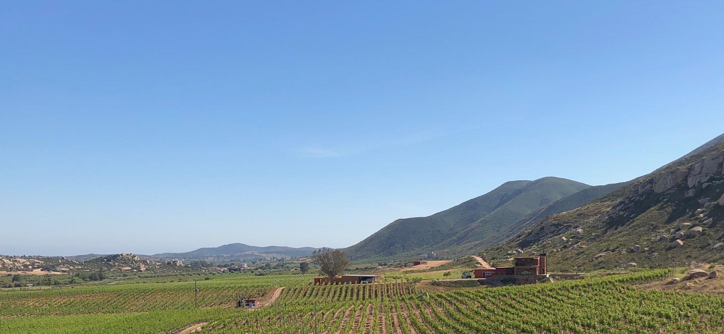 Villa Montefiori