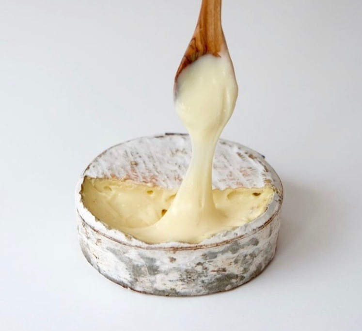 Harbison cheese from Jasper Hill, Vermont.