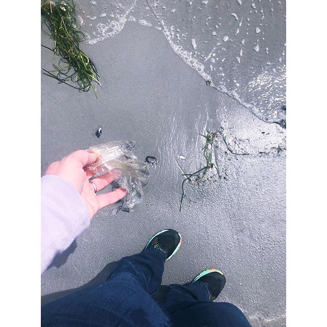 The afterlife of a Mylar balloon — colorants, image long-gone. #planetorplastic . . . . . #PlanetOrPlastic #plasticpollution #2minutebeachclean #plastigram #lovelywhale #plastics #beatplasticpollution #marinelitter #litterati #plogging #envhist #knowyourworld #ocean🌊 #plastic #refusereducereuserecycle #justgrabbits #obligation #responsibility #storyofstuff #beachclean #balloons🎈#balloonlove #balloonsblow