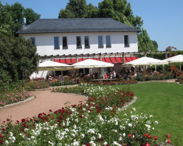The Rose Garden Cafe where I spent part of my last day in Dresden, getting ready for my return to Paris and the work of my research. May 2011