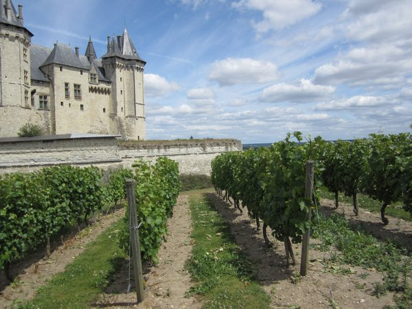 The chateau at Saumur and its surrounding vineyards.