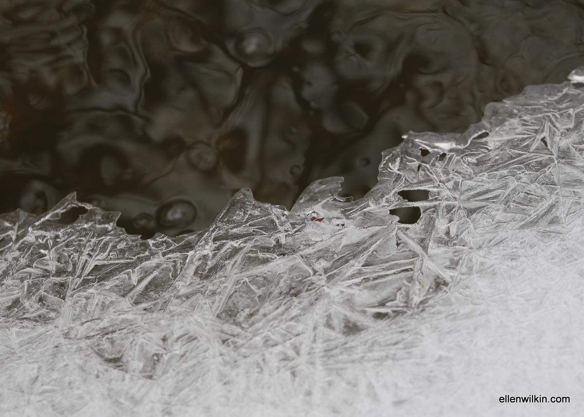 Ice Melding into Water, Dry Creek