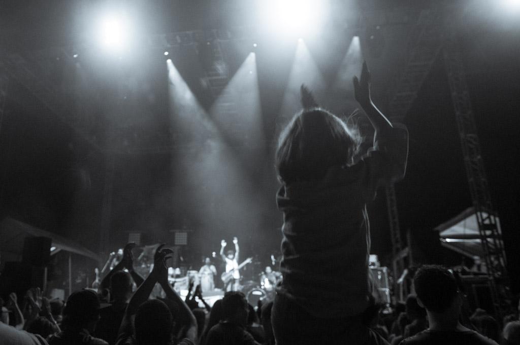Festival Sayulita - Jungle Live!-30.jpg