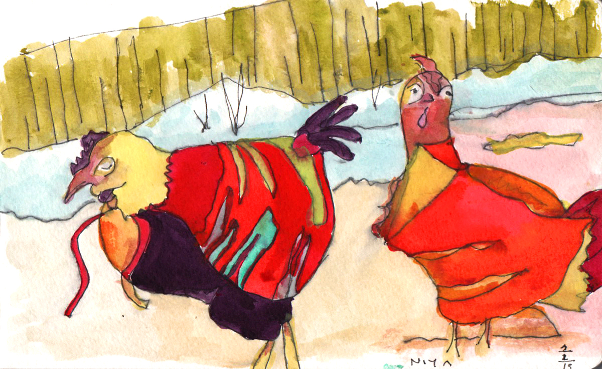 Chickens in Sweaters copy.jpeg