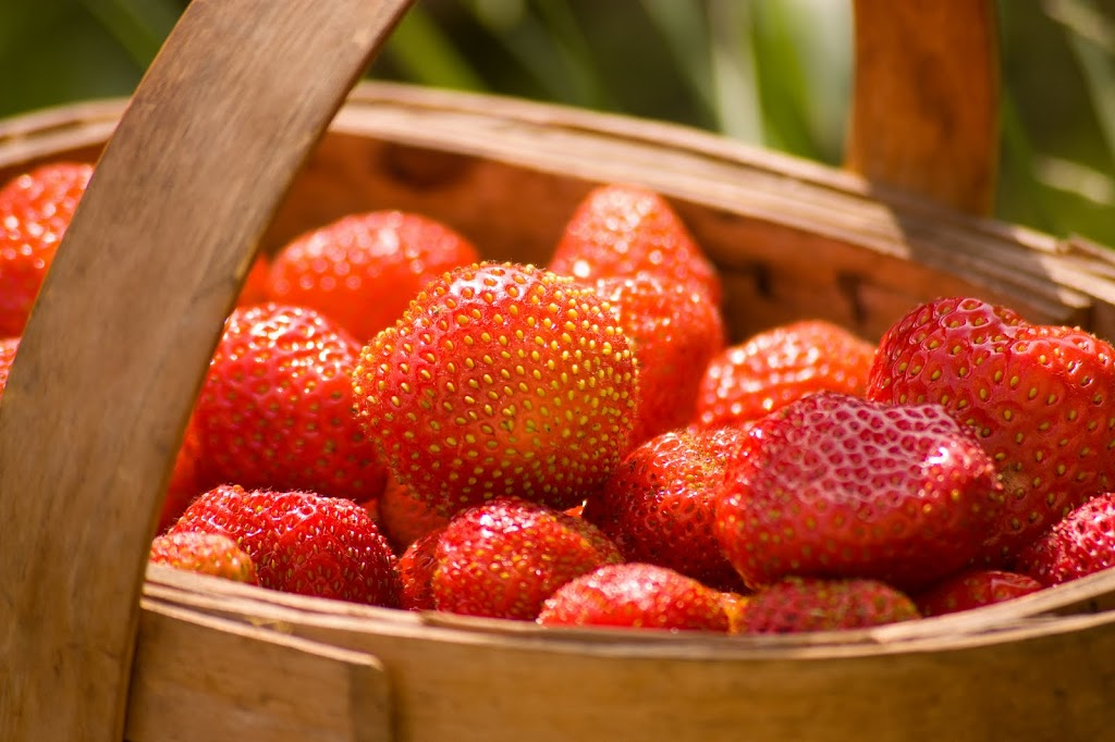 strawberries-2Bin-2Bbasket-300x1991.jpg