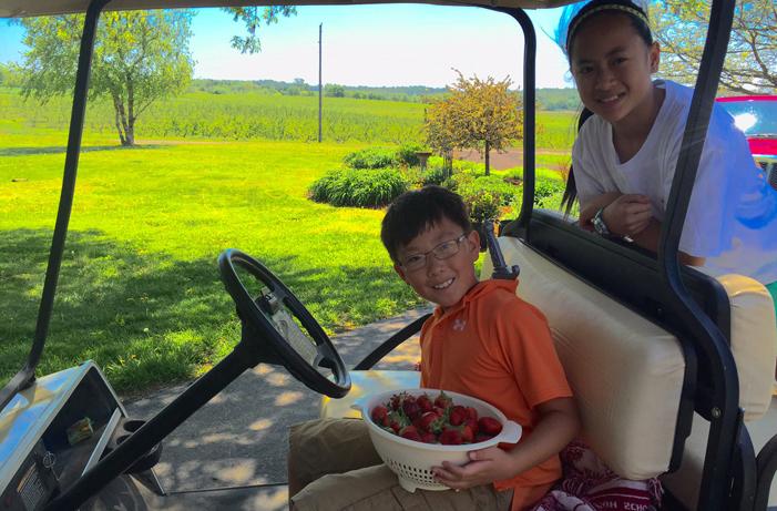 kids on cart