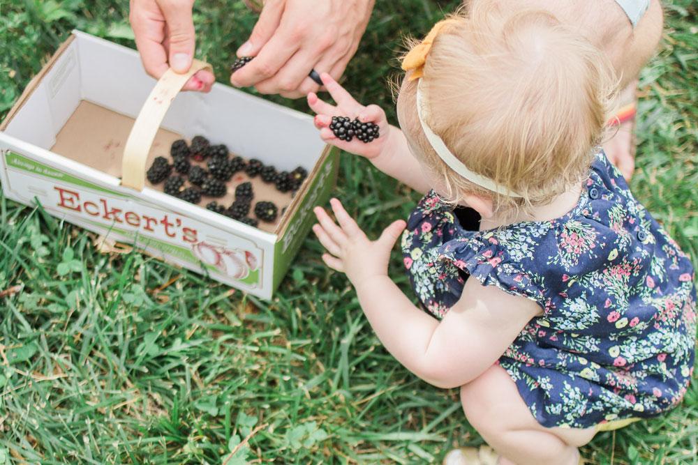 blackberry-picking-baby.jpg