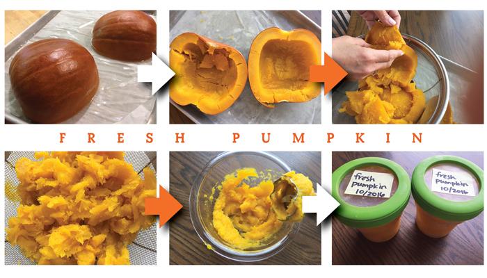 fresh pumpkin collage.jpg