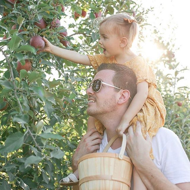 Sometimes you need a helping hand to reach the BEST apples 🍎 🍏 - - - - - #eckerts #eckertsfarm #eckertfarms #pickyourown #apples #homegrown #eatfresh #shoplocal #farmtotable #familytime #fallfun