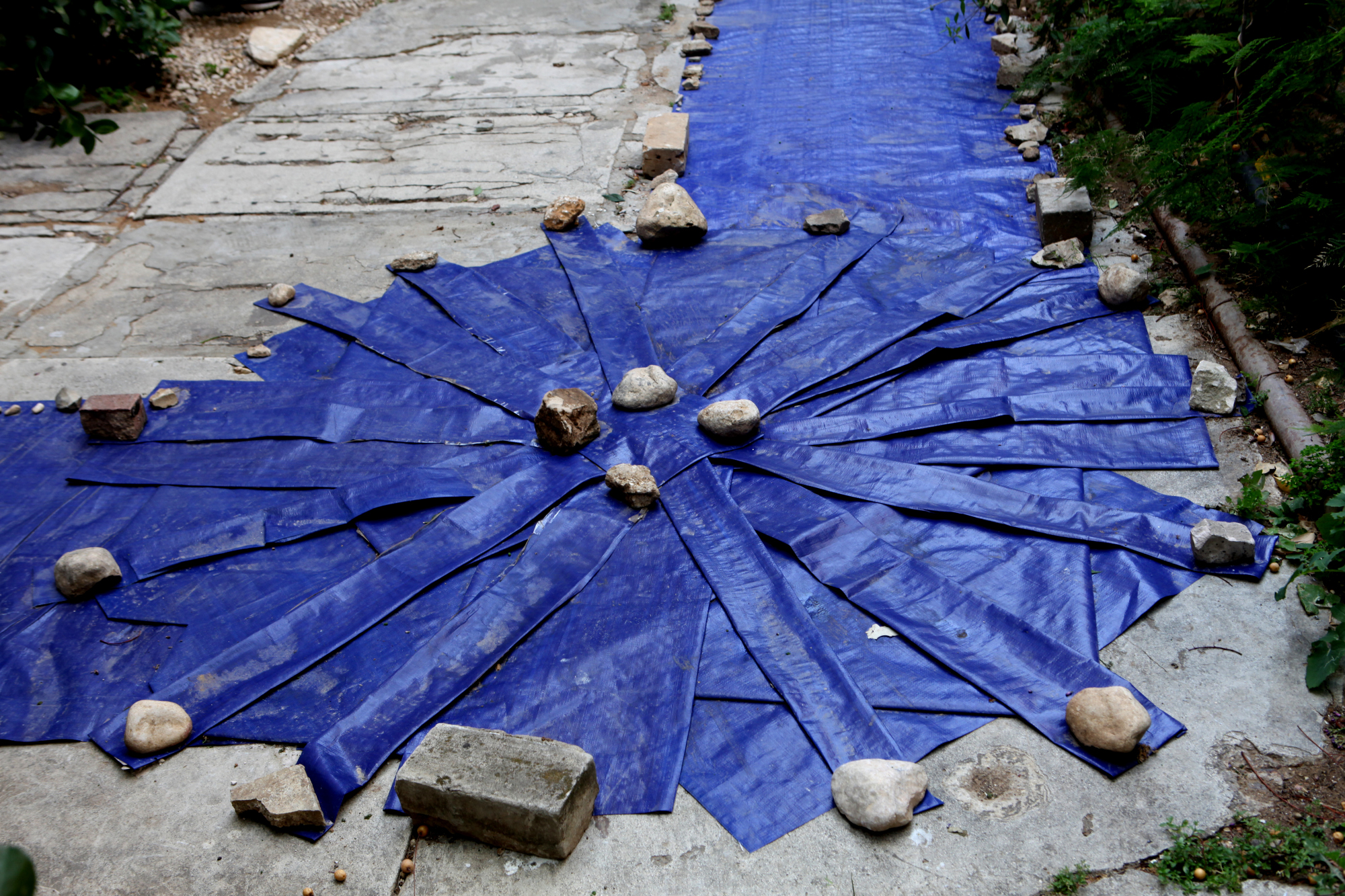 stones-carpet1.jpg