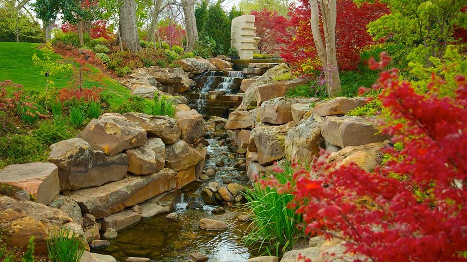 Dallas-Arboretum-And-Botanical-Garden-35012.jpg