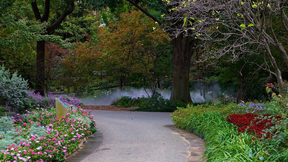 Dallas-Arboretum-And-Botanical-Garden-24057.jpg