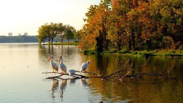white-rock-lake-dallas.jpg