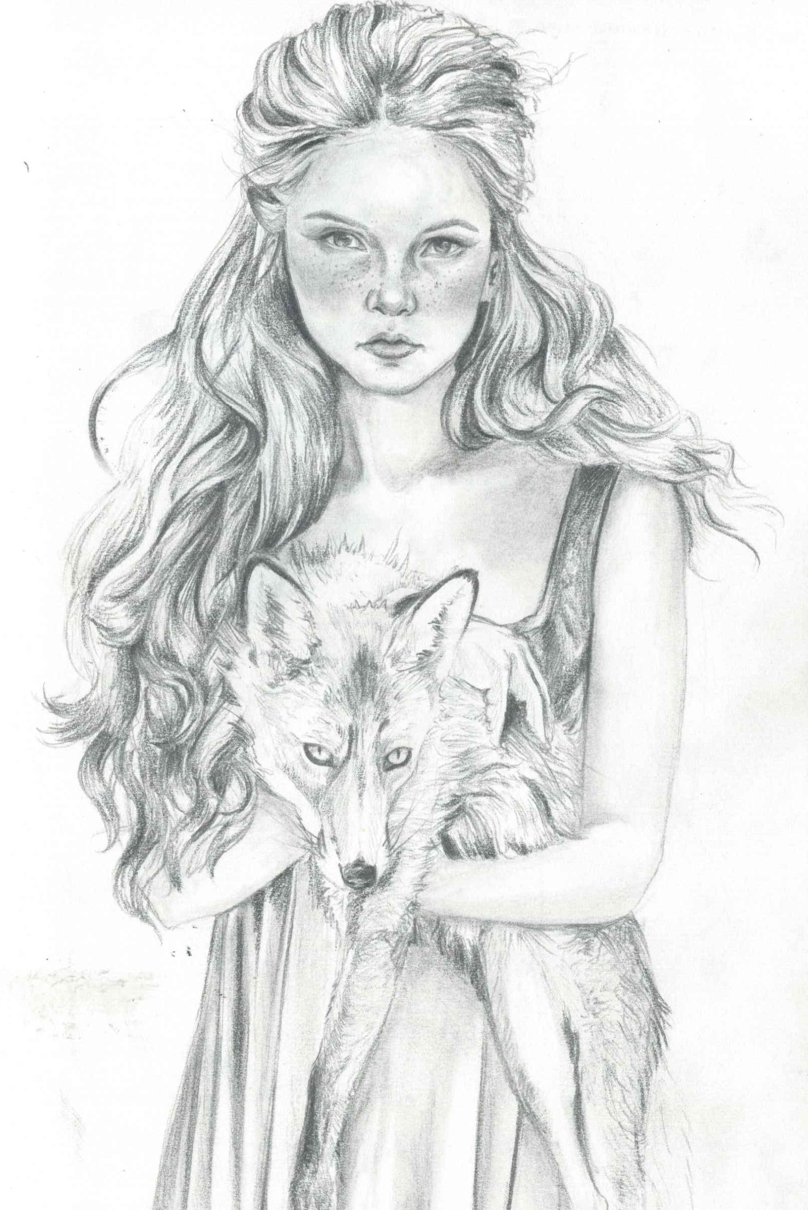 Foxy Sketch