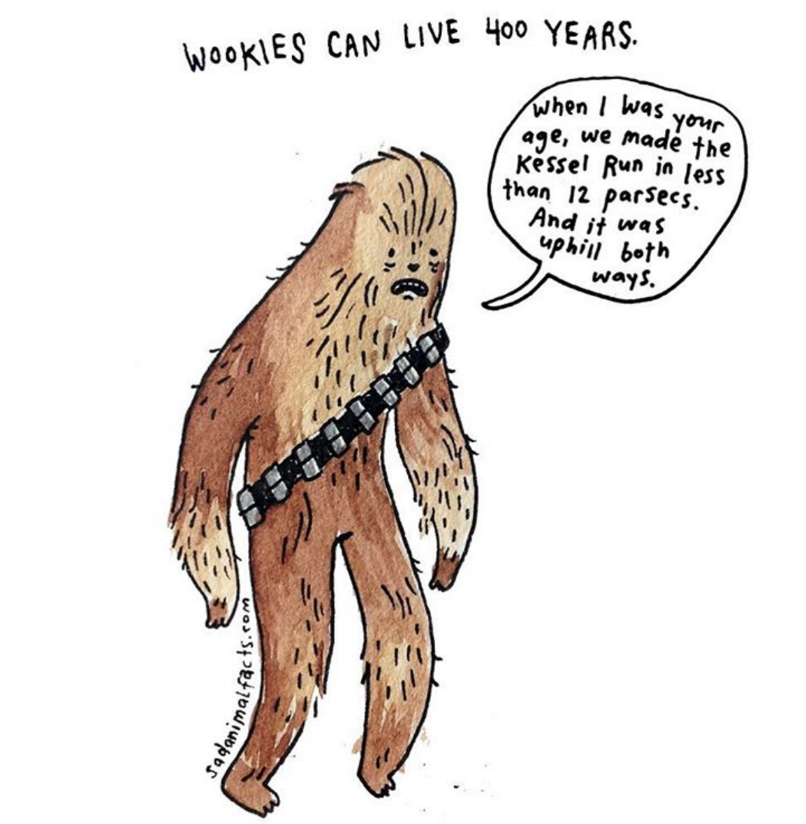 sad animal facts wookie