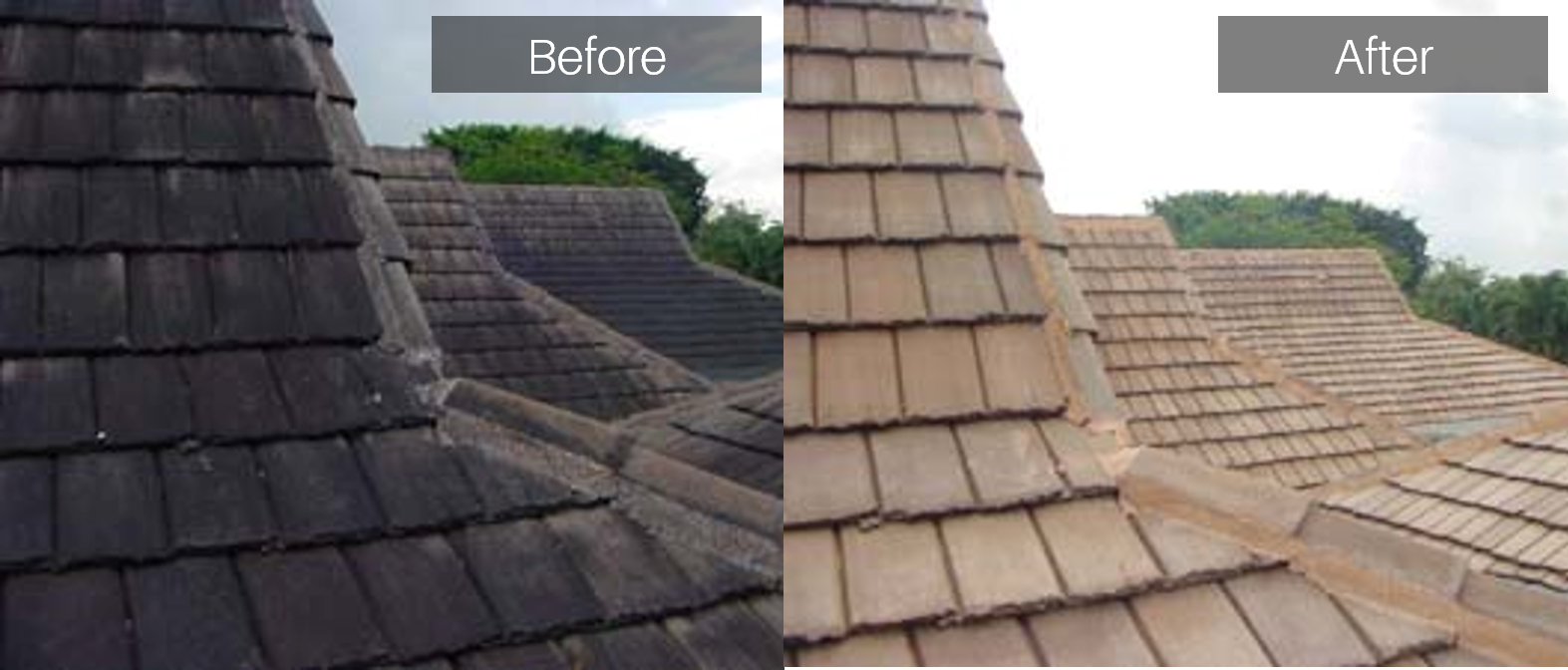 Shingle_Roof_Bef_Aft.png
