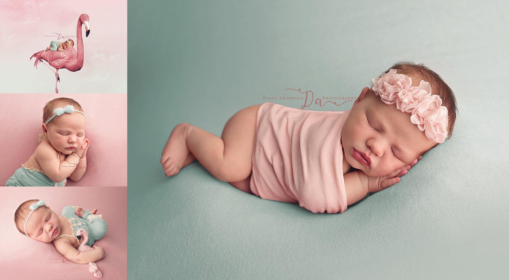 flamingo-newborn-session-worland-wyoming.jpg