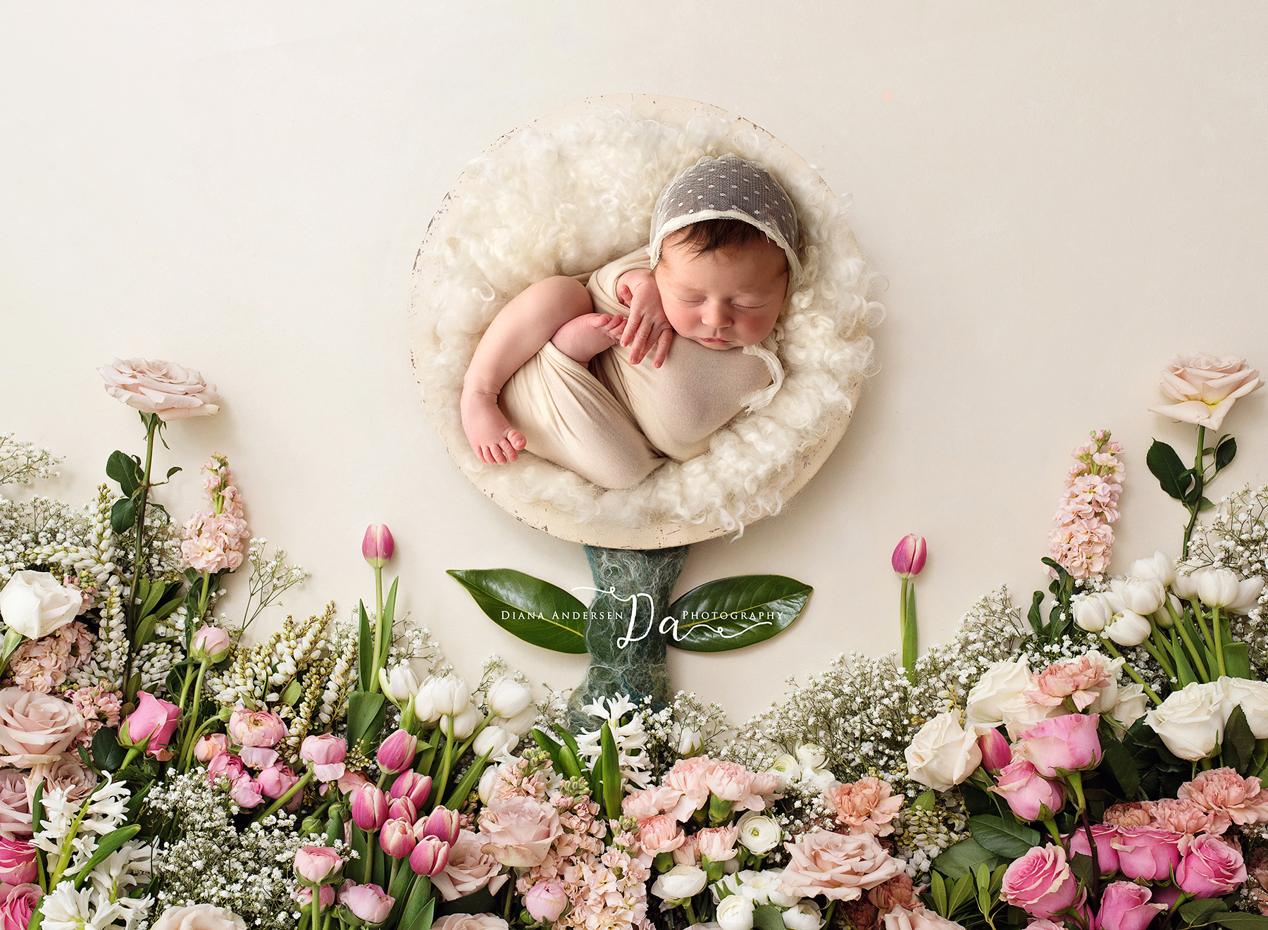 Catherine-newborn11-fb.jpg