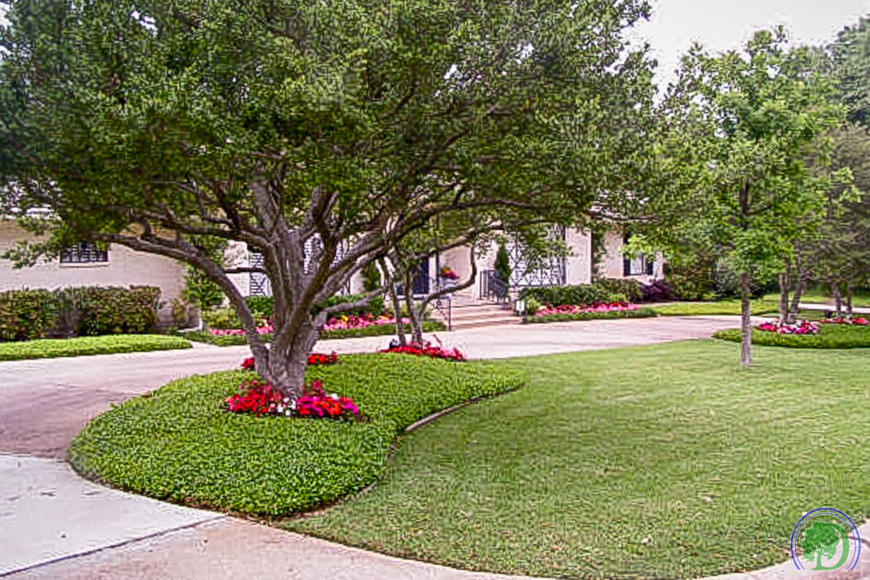 Lawn Care-4.jpg