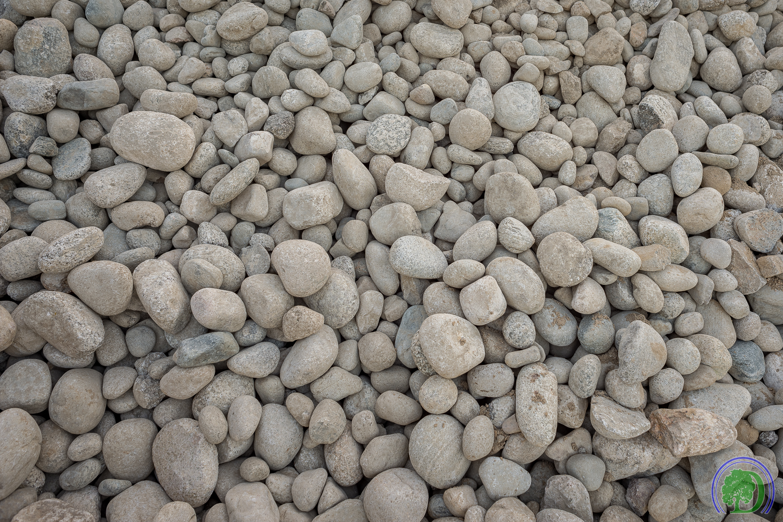 New Mexico River Rock